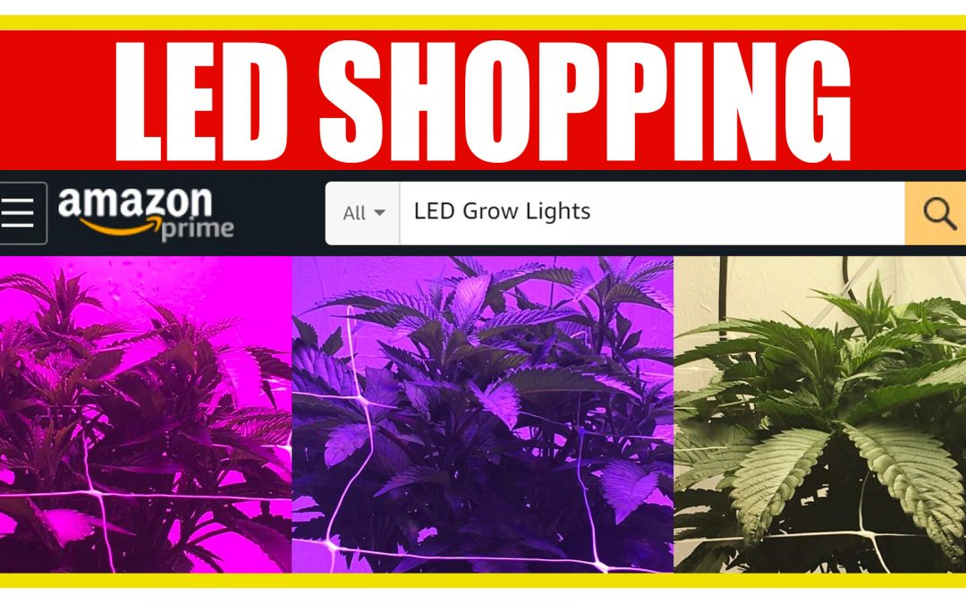 What to look for when buying an LED online